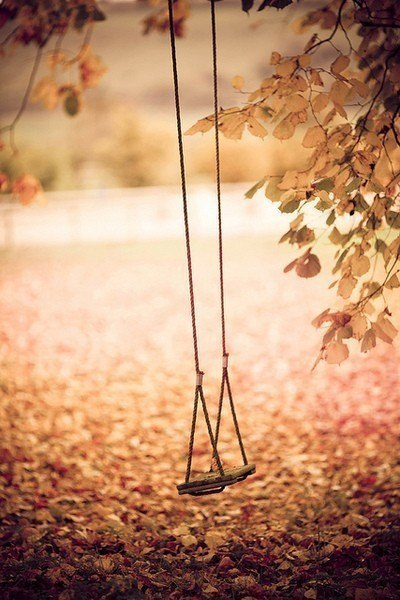 swing fall leaves